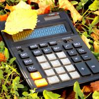 solar powered calculator in a pile of fall leaves