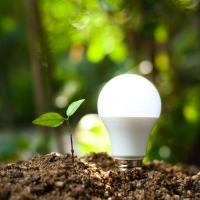 led light bulb in dirt next to green seedling in dirt mound