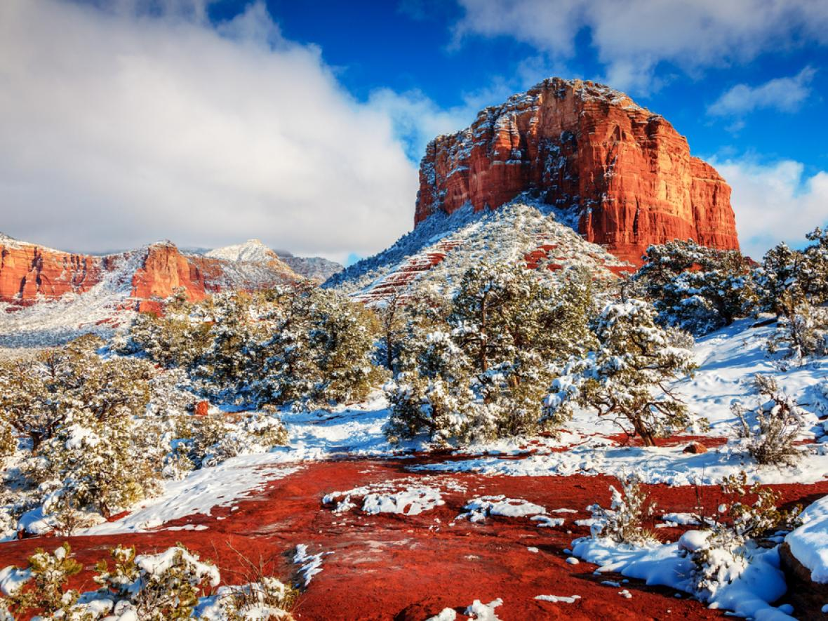 arizona winter