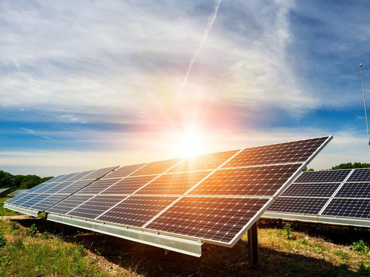 solar farm in the sun